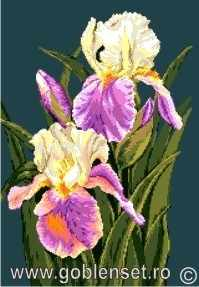 978 Irises