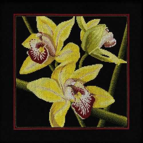 "M264 Орхидеи ""Цимбидиум"""
