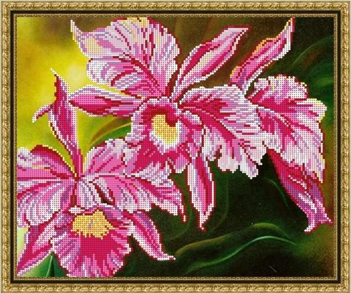 Б-3221 - Орхидейка - схема (Алёшкина любовь)