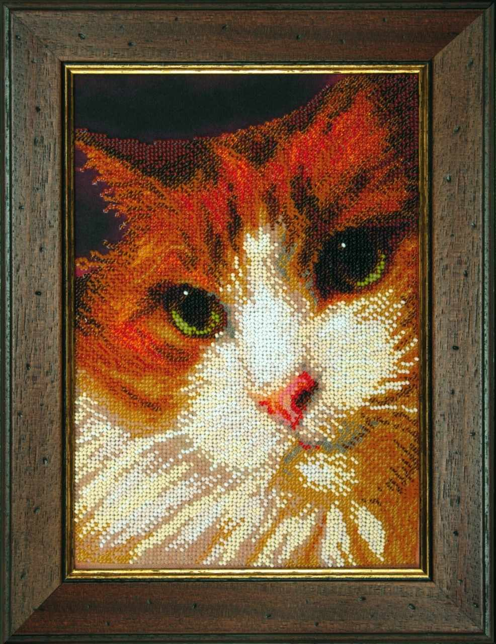 "Б-733 ""Рыжий кот"" - чм"