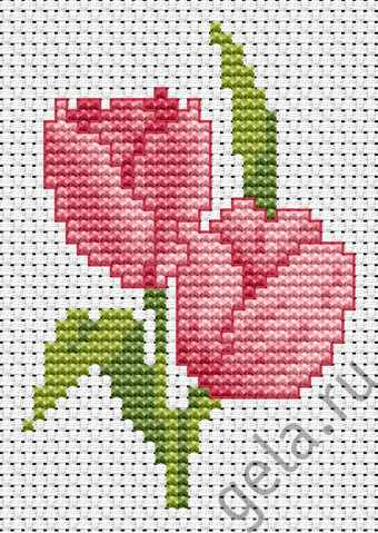 B022 Два розовых тюльпана (Luca-S)