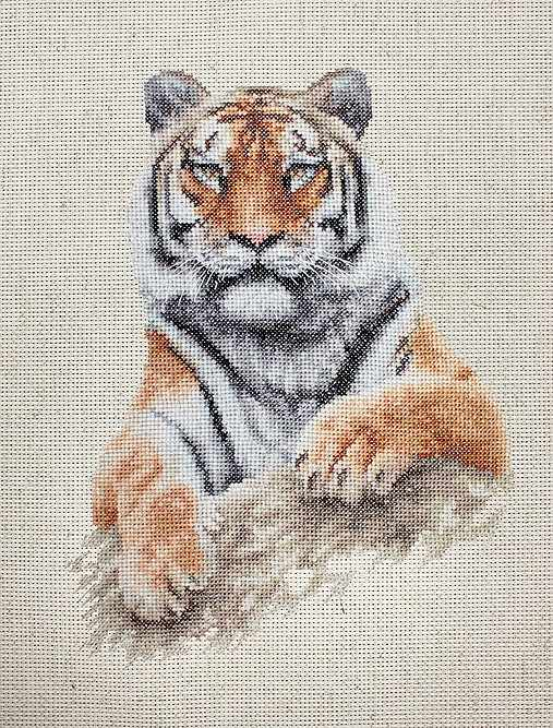 B2289 Тигр (Luca-S)