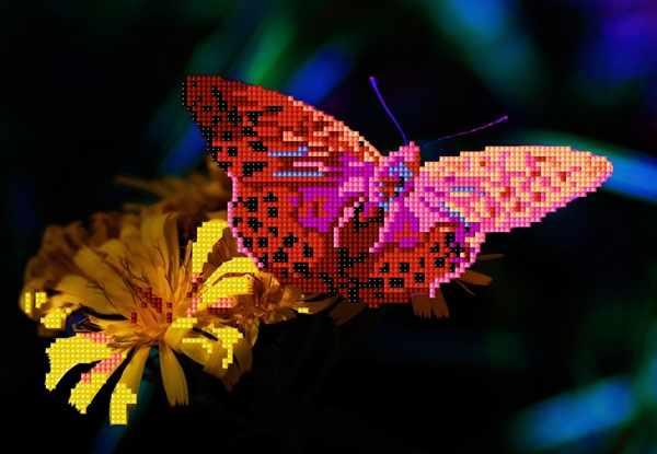 Ц-005 Arginnis Pandora (бабочка на желт. цв.) - схема
