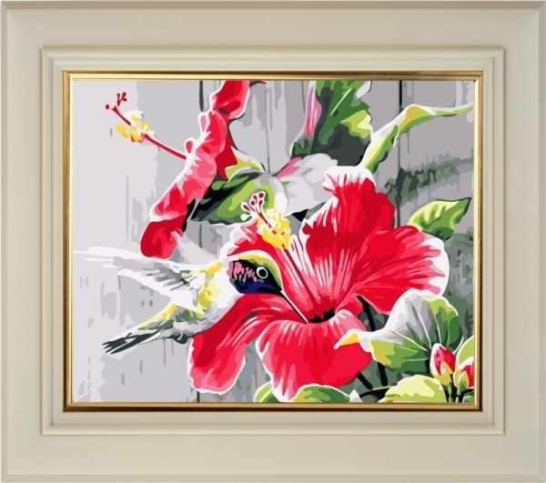 CK025 Гибискуса цвет