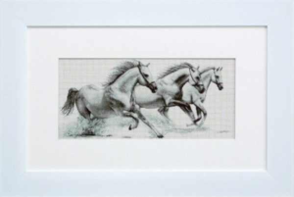 G495 Белые лошади (Luca-S)