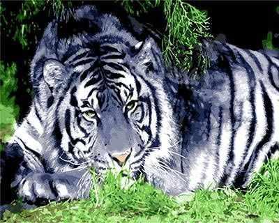 "GХ8952 ""Белый тигр"""