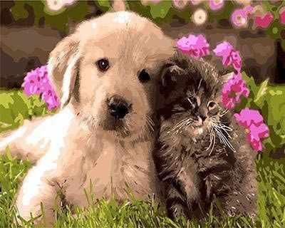 "GX8954 ""Щенок и котенок на траве"""
