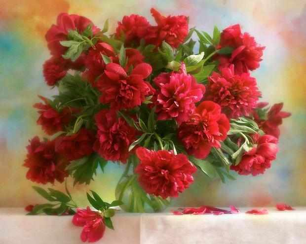 GX7527 Букет красных цветов