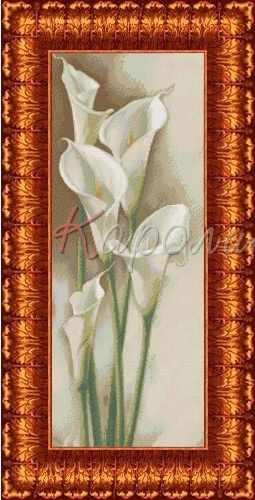 КБЦ 2003 Каллы - схема (Каролинка)
