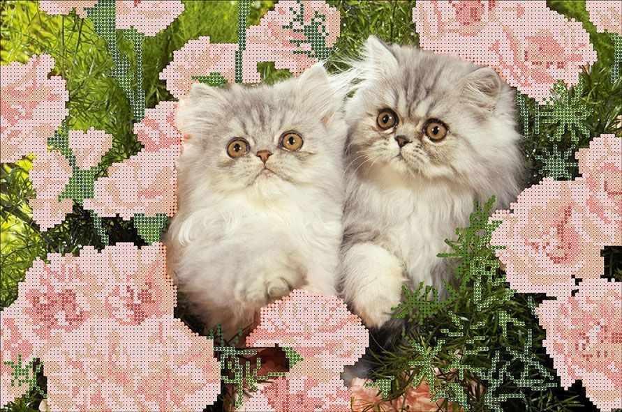 КМЧ-3478 Котята в цветах - схема (Мастерица)