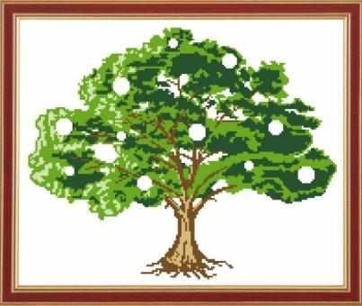 КС-005 Денежное дерево - схема (Славяночка)