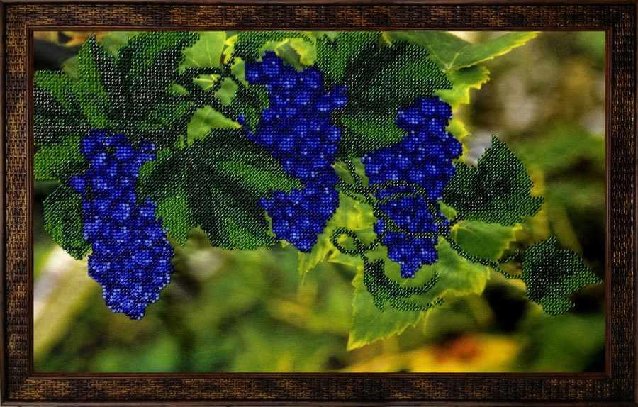 КВ608 Виноградная лоза - набор