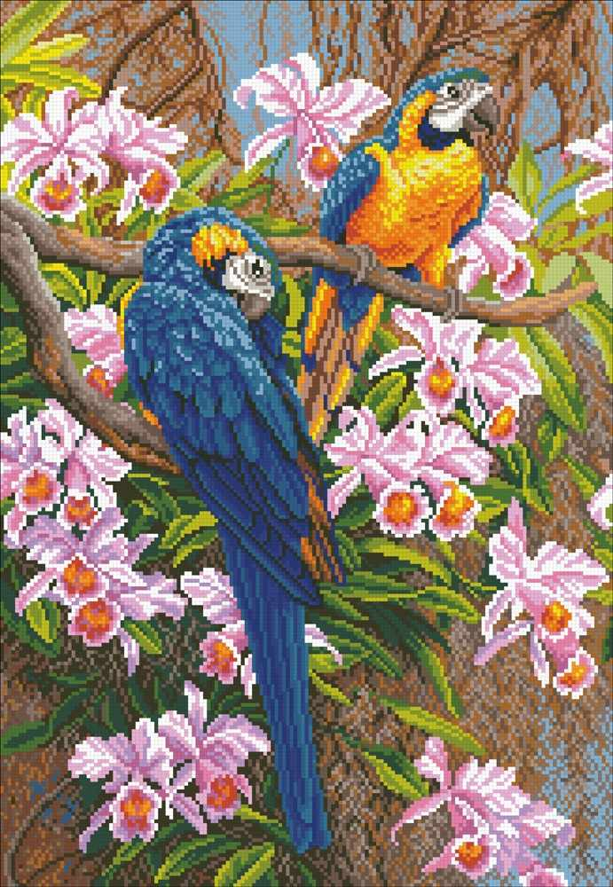 М328 Попугаи - мозаика (Паутинка)