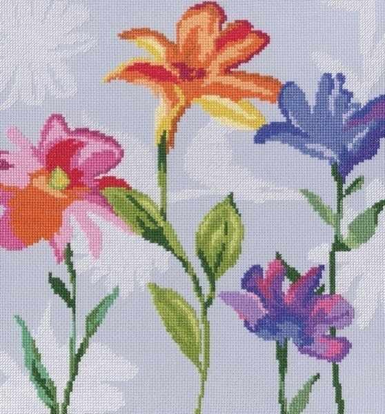 М570 Цветы радуги