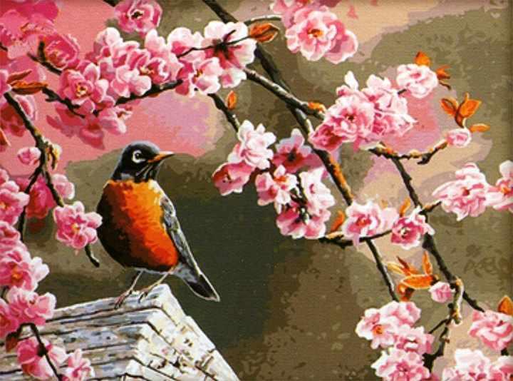 MG046 Птичье акварелье - раскраска (Menglei)