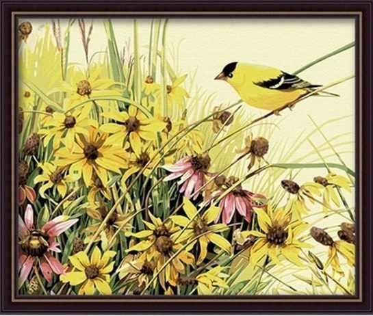 MG057 Птица певчая - раскраска (Menglei)