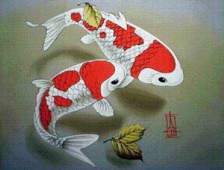 N-235 Японский карп - мозаика Милато