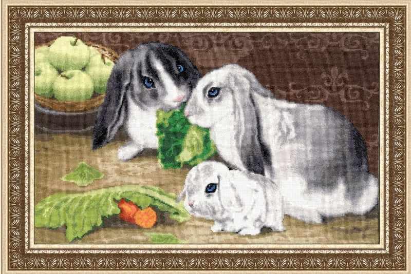 НЛ-036 Кролики. Наши любимцы