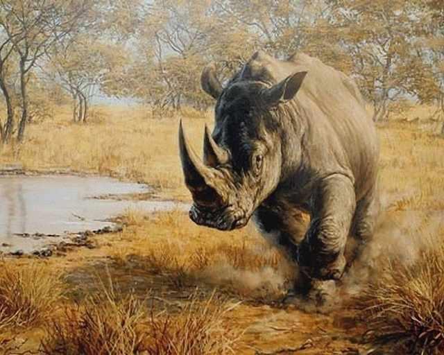 O-526 Носорог - мозаика Милато