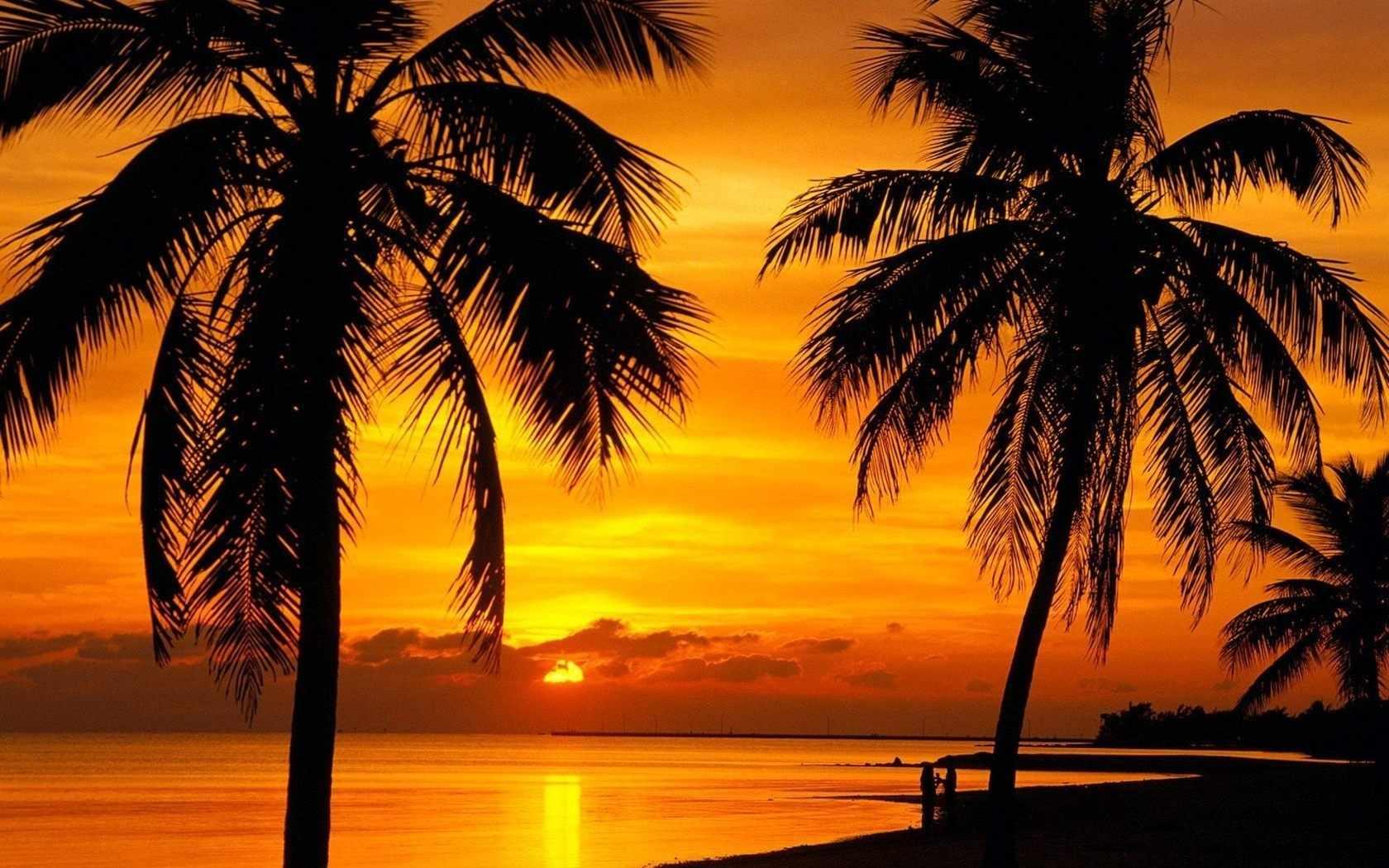 Пальмы на закате (АЖ-1090) - картина стразами