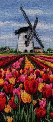 PCE0806 Тюльпаны у мельницы