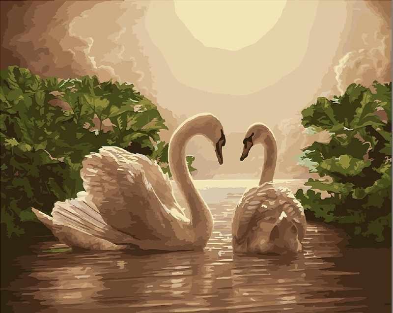 R-0074 Королевские лебеди