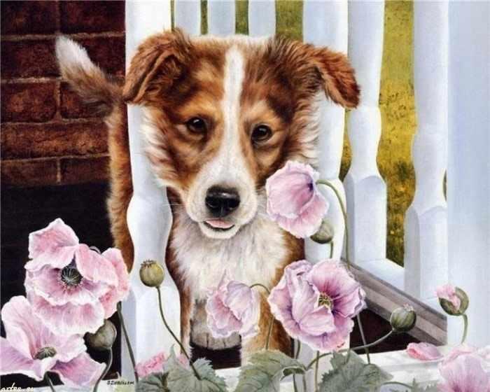 R-898 Пёс - мозаика Милато