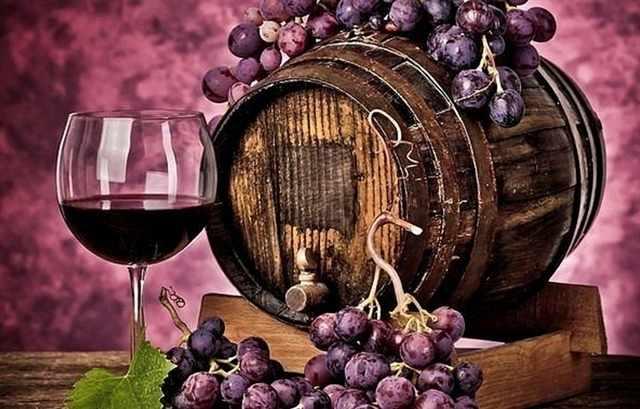 RDG-0246 Красное вино и виноград