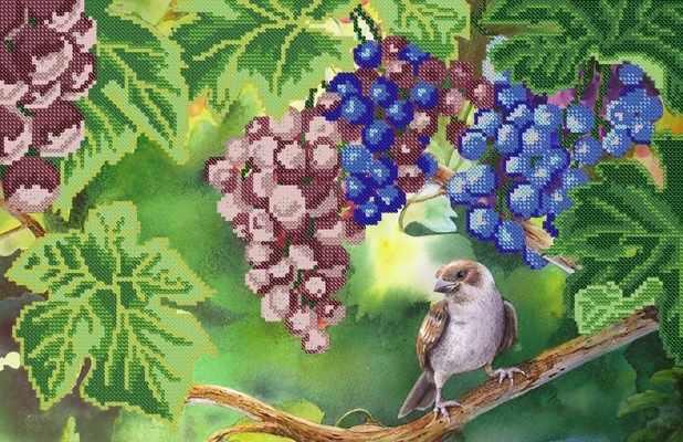 РКП-226 Спелые грозди - схема (Марiчка)