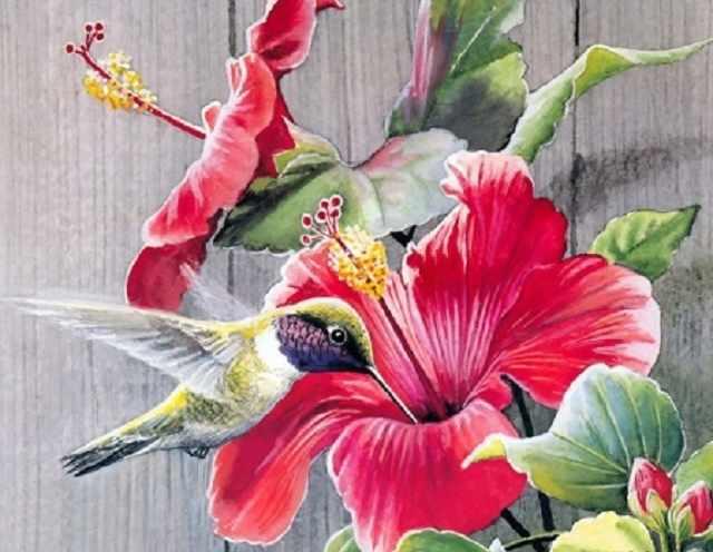 SG025 Колибри - мозаика из страз (Цветной)