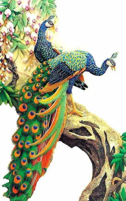 SG202 Павлины - мозаика из страз (Цветной)