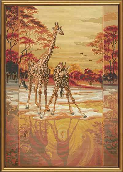 СР 0013 Дикая Африка
