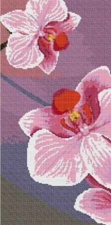 ВЦ-011 Орхидея 2 - набор (Орнамент)