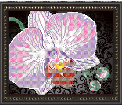 VKA4105-B Орхидея на черном - схема (Art Solo)