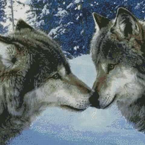 Волчий поцелуй (АЖ-1053) - картина стразами