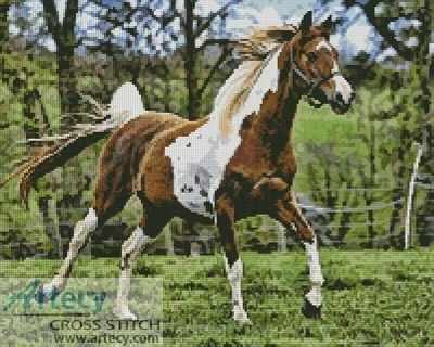 20567 Арабская верховая лошадь