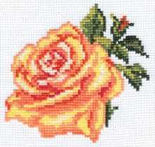 0-041 Роза