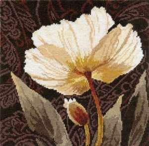 2-17 Белые цветы: Залитый светом