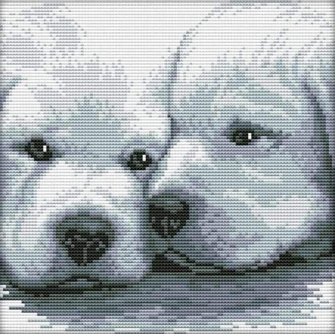 2170-14 Два белых щенка (Белоснежка)