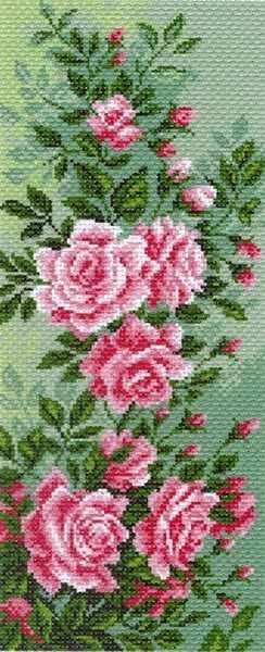 1053 Плетистая роза (МП)