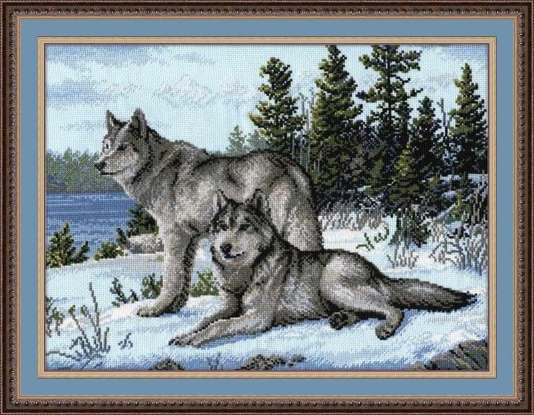 567 Волки (Овен)