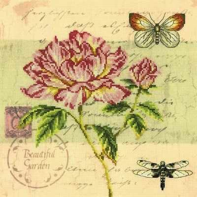M70014 Почтовая открытка - Пион