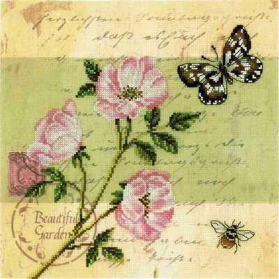 M70015 Почтовая открытка - Шиповник