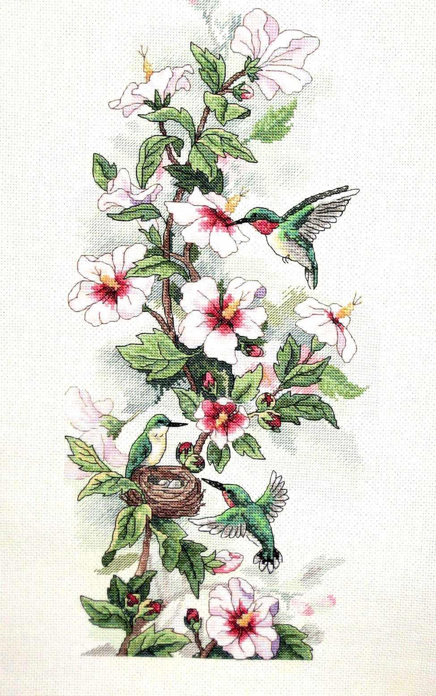 13667 DMS Клематис и колибри