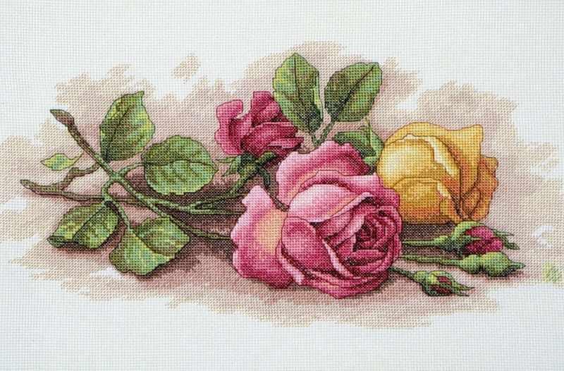 13720-DMS Срезанные розы