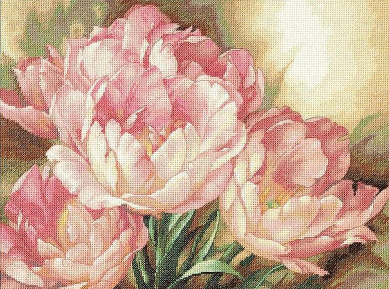 35175-DMS Трио тюльпанов