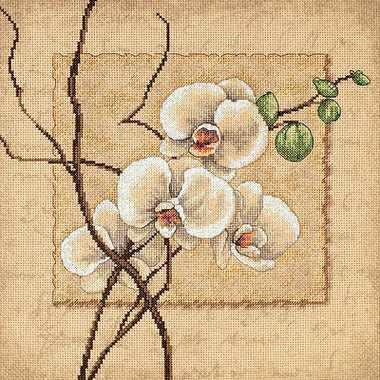 35176-DMS Восточные орхидеи