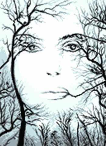 0855 Лицо сквозь деревья (Face of trees )
