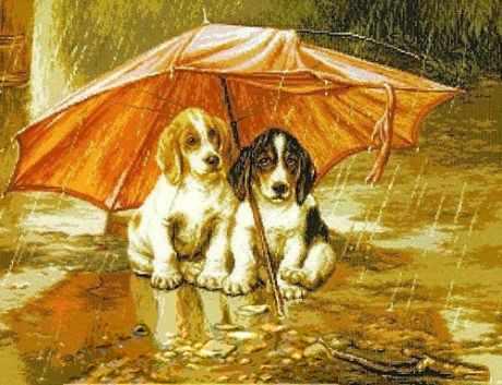 0909 Под зонтиком