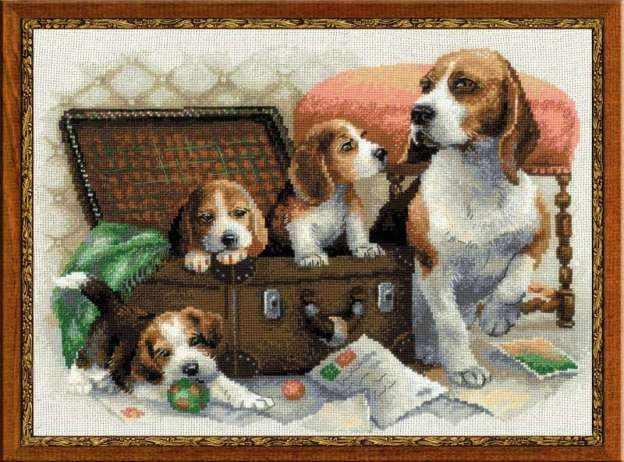 "1328 ""Собачье семейство"""